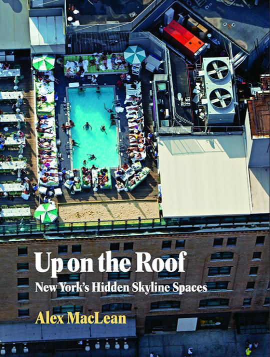 Up on the Roof New York's Hidden Skyline Spaces