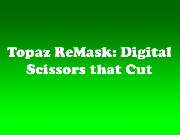Topaz ReMask Digital Scissors that Cut